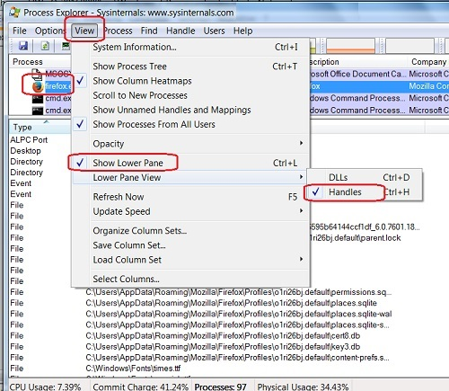 Windows 7 Process Explorer - Resource Handles